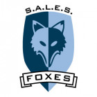 sales-foxes